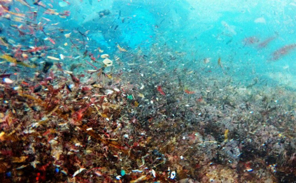 Χιλιαδες μικροπλαστικα στην θαλασσα